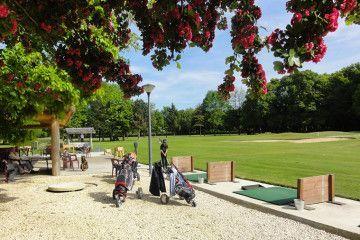 golf_sarrays-berry