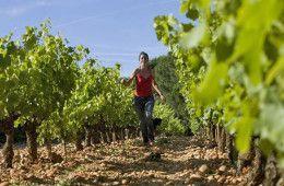 vin-de-femmes