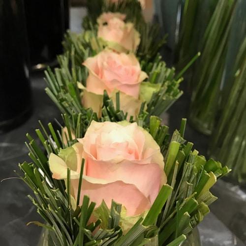rose solitaire
