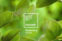 greenery-pantone 2017